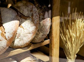 Beneficios en Le Pain Quotidien