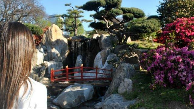 Jardín Japonés. Foto: Cynthia Martínez Wagner