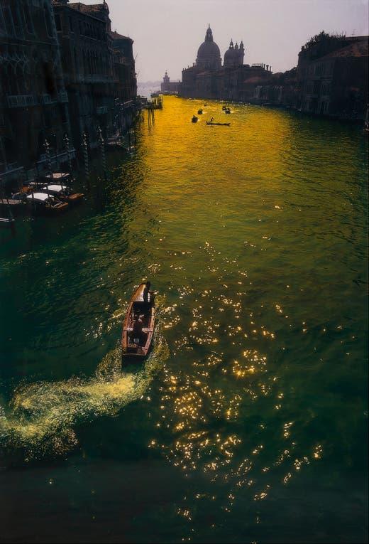 Venecia fue el inicio de una carrera dedicada a la naturaleza: la de García Uriburu