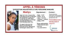 Francia: buscan a una niña de 9 años que desapareció en medio de una boda