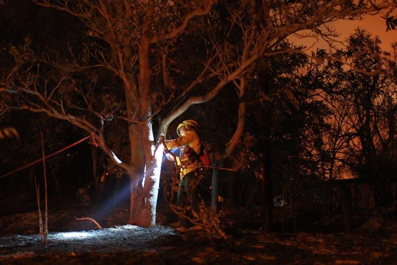 Un bombero recorre la zona afectada. Foto: AFP