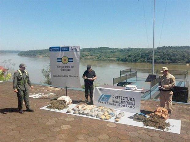 Representantes de las tres fuerzas federales con la droga confiscada en el río
