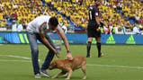 Fotos de Selección de Colombia