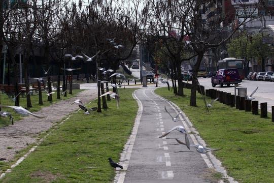 Una zona recientemente refaccionada, sus plazas y las misma estación de trenes fueron remodelados con la intención de que un crecimiento inmobiliario mejore el barrio. Foto: LA NACION / Maxie Amena
