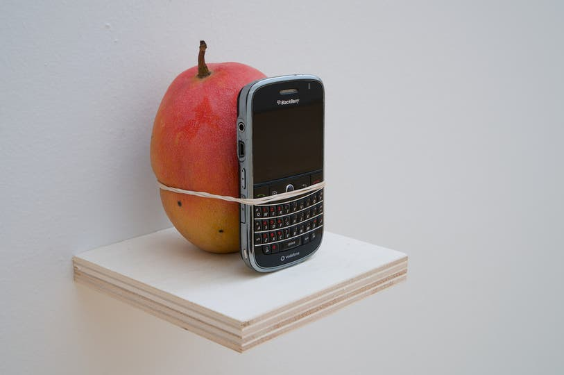 Look at the Size of this Mango, objeto, 2011