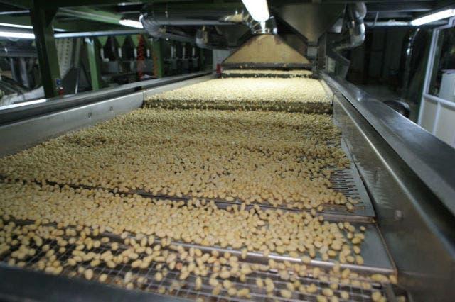 Córdoba es la meca de la producción de maní en la Argentina