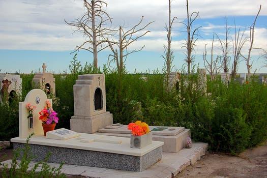 Algunos familiares aún dejan flores en las tumbas de sus familiares; en el fondo se ven árboles secos por la acción del agua. Foto: LA NACION / Mauricio Giambartolomei
