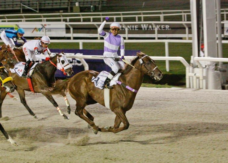 Con Wilson Moreyra, el caballo que es entrenado en Palermo le dio a la Argentina su sexta victoria en la carrera y la tercera como vistante