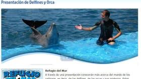 Las presentaciones de orcas y delfines están presentadas como las atracciones principales en la página