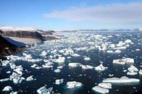 Calentamiento global en el Artico, su efecto sobre la vida marina a distintas profundidades.