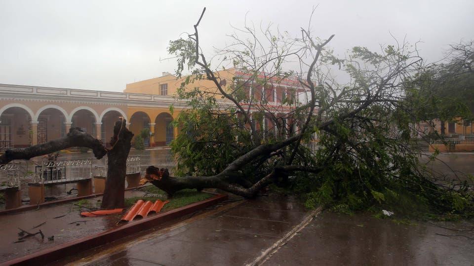 Vista de un árbol caído en las calles de la ciudad de Remedios, en el centro de Cuba, durante el paso del huracán Irma. Foto: EFE / Alejandro Ernesto
