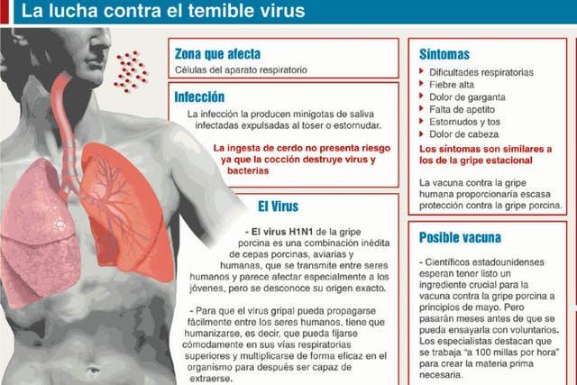 Cómo afecta el virus de la gripe A en el hombre