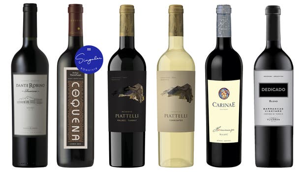 6 vinos de temporada