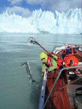 Skvarka analiza los glaciares