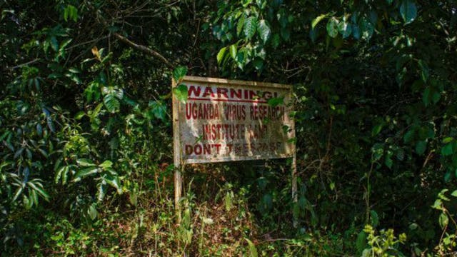 http://bucket3.glanacion.com/anexos/fotos/12/el-avance-del-virus-zika-2151712w640.jpg