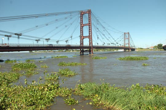 Tras la mayor crecida del Iguazú y del Paraná en 16 años se esperan inundaciones en cuatro provincias del Litoral. Foto: Diario Uno