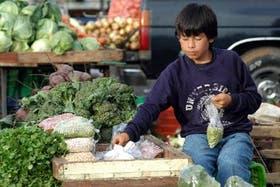Se calcula que hay 19,7 millones de niños que trabajan en América latina