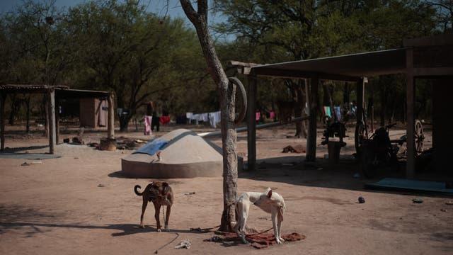En la casa de los González viven 11 personas; la cisterna les ayuda a organizar mejor el tiempo y a contar con agua para tomar