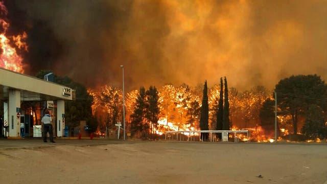 Por un incendio, se destruyó parte del bosque de Cariló y Valeria del Mar. Foto: Télam