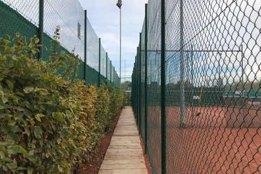 Los pasillos del Tennis Club Old Boys, donde Federer empezó a formar y potenciar su personalidad.