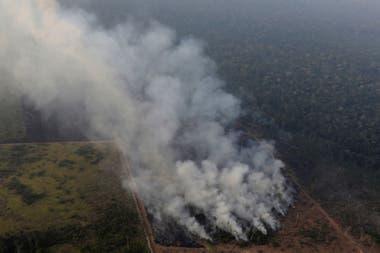 Varios países ya manifestaron su preocupación por la situación en la Amazonia