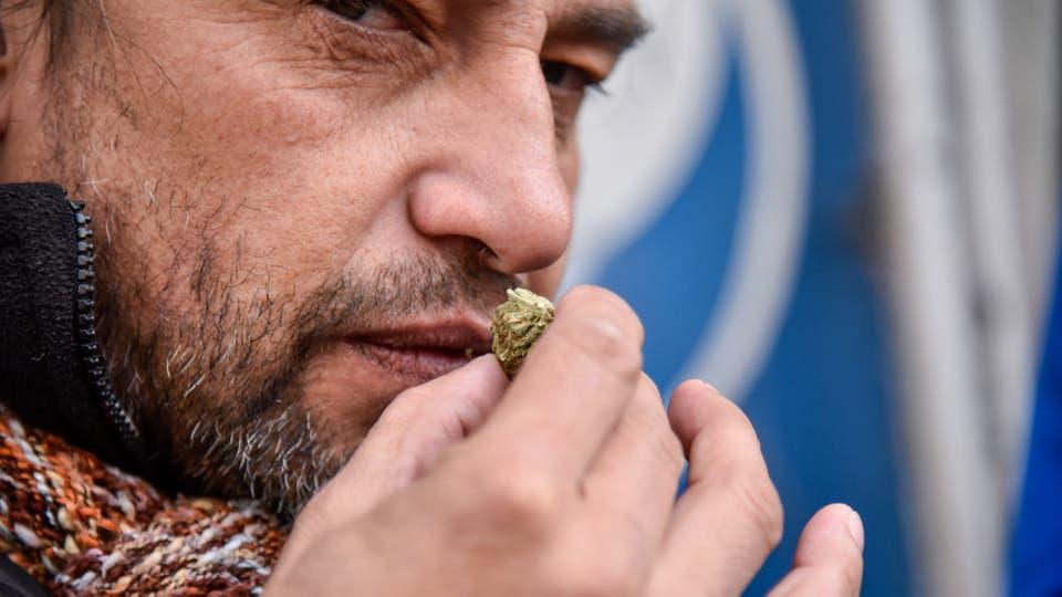 Venta de marihuana en farmacias de Uruguay. Foto: Pablo Abarenga