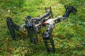 En base a un algoritmo, el robot puede evaluar con qué opciones cuenta para llevar adelante su misión tras una falla en uno de sus patas