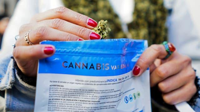 Comienza la venta recreativa en las farmacias de Uruguay. Foto: AP / Matilde Campodonico