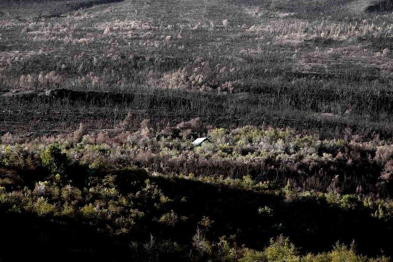 Miles de hectáreas arrasadas por el fuego. Foto: LA NACION / Emiliano Lasalvia