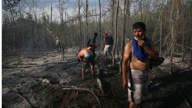Alrededor de 50 hectáreas quedaron total y parcialmente destruidas. Foto: LA NACION / Mauro V. Rizzi //Enviado especial