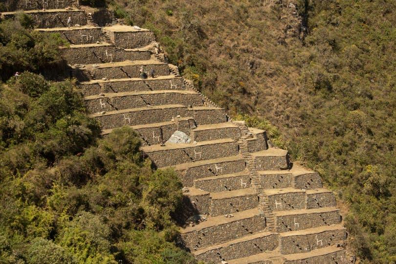 Las terrazas decoradas con llamas, símbolo de Choquequirao. Foto: Luis Agote