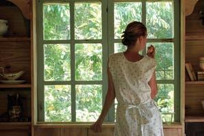 Misión mosquitos: cómo proteger tu casa