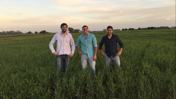 Sebastián Galdeano, Marcos y Tomás Alvarado