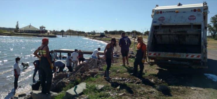 Se enviaron muestras a la Dirección de Recursos Hídricos de La Pampa para determinar las causas