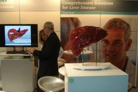 Los médicos alertan por el incremento de enfermos con hepatitis en las próximas décadas
