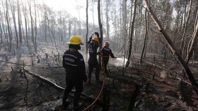 El fuego empezó cerca de las 14.30, cruzó la ruta interbalnearia. Foto: LA NACION / Mauro V. Rizzi //Enviado especial