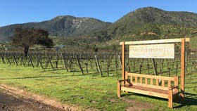Veramonte se caracteriza por realizar una producción orgánica de vinos