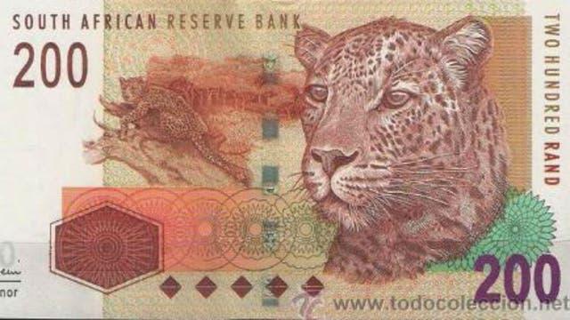 Un guepardo en el diseño del billete 200 rands