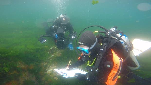 Arqueólogos dibujando los restos encontrados bajo el agua.