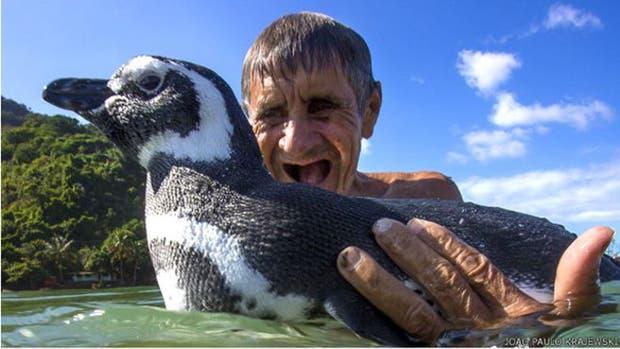 La verdadera historia de DinDim, el pingüino que fue salvado por un albañil en una playa de Brasil