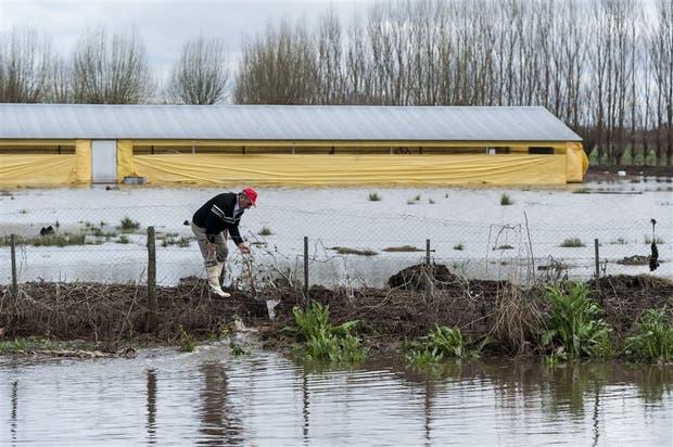 Un chacarero limpia una zanja para que escurra el agua de su establecimiento en Soldini, Santa Fe