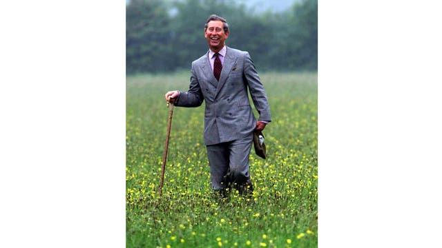 Caminando un prado no tratado con fertilizantes, en la granja Clattinger de Wiltshire Wildlife Trust, al oeste de Inglaterra, el Príncipe siempre fue defensor de los cultivos tradicionales