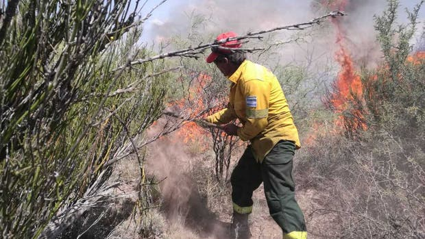 Los incendios forestales llegan a Neuquén y el gobierno envía ayuda
