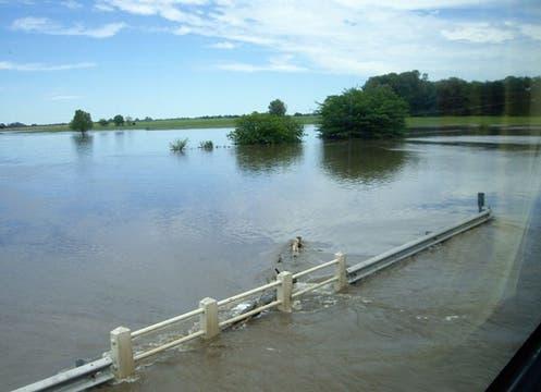 Muertos y miles de evacuados por la crecida del río Areco. Foto: lanacion.com / Milagros Amondaray