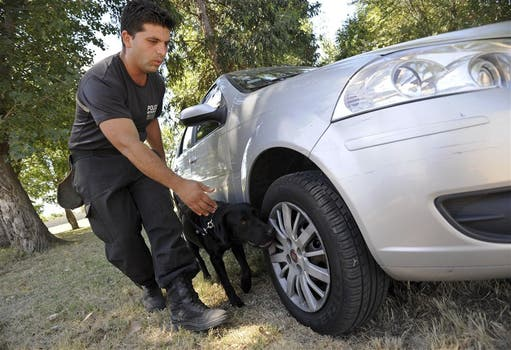SEGURIDAD. Buscar explosivos y drogas está entre las tareas de los canes de la policía porteña. Foto: Patricio Pidal / AFV