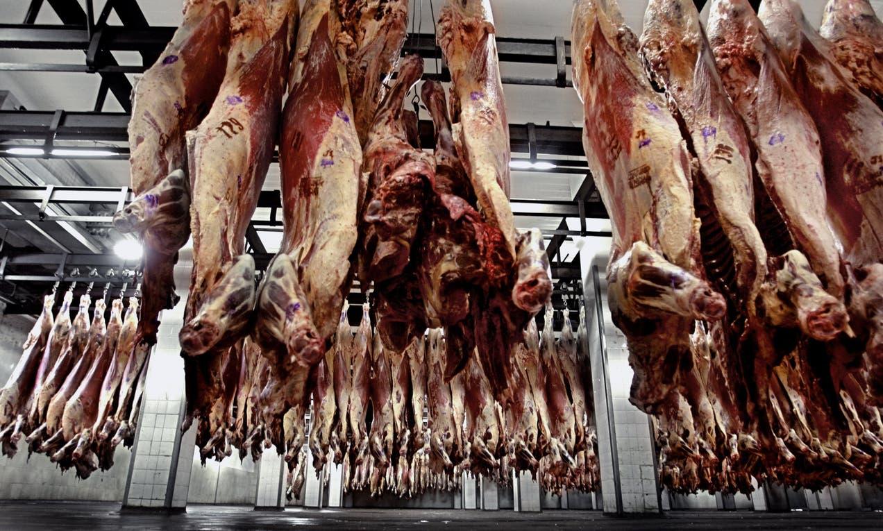 El sector frigorífico está atento a la crisis en Brasil.