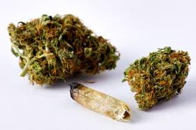 Bolsitas Verdes la de muzzarela con 3 bolsitas de marihuana $100