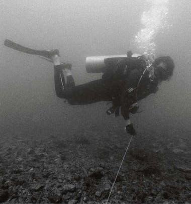 En plena tarea, sumergida en el mar
