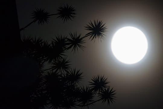 En Caracas Venezuela, la luna se vio muy blanca y brillante antes del eclipse. Foto: EFE