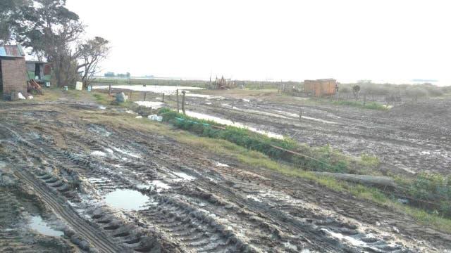 Según los productores, llega agua de General Vilegas